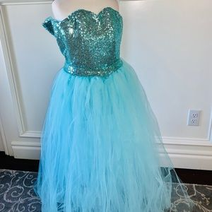 Other - Custom Frozen Elsa Dress